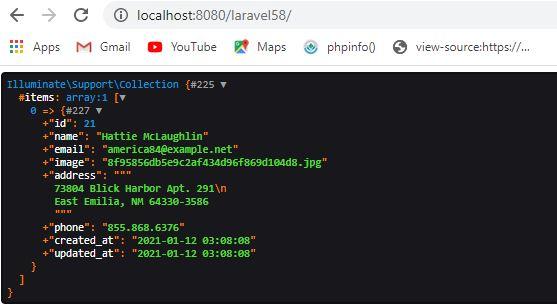 Query Builder in Laravel 5.8